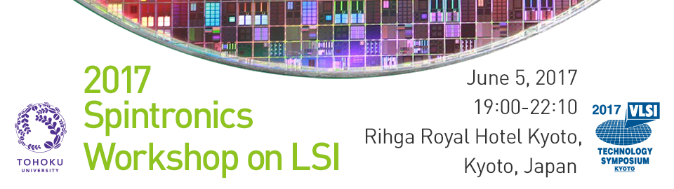 2017 Spintronics Workshop on LSI