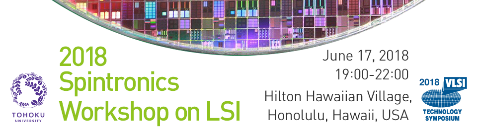 2018 Spintronics Workshop on LSI