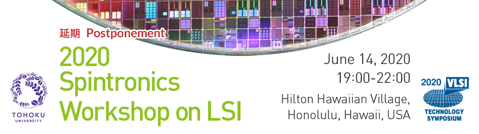 2020 Spintronics Workshop on LSI