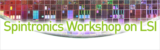 Spintronics Workshop on LSI