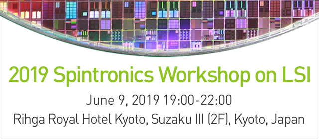 2019 Spintronics Workshop on LSI